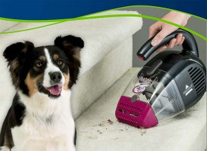 Best Vacuums for Pet Hair 2020